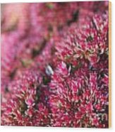 Pink Flower Bouquet Wood Print