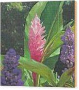 Pink Ginger Wood Print