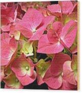 Pink Hydrangea Flowers Wood Print