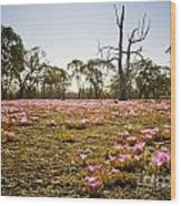 Pink Wildflowers Wood Print