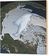 Planet Earth Showing Sea Ice Coverage Wood Print