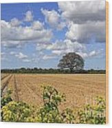 Ploughed Field Wood Print