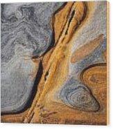 Point Lobos Abstract 4 Wood Print