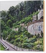 Poland - Monastery Of Discalced Carmelites In Czerna Wood Print