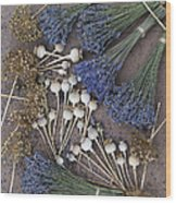 Poppy Seed Pods And Dried Lavender Wood Print by Tim Gainey