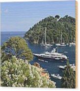 Portofino Coast Wood Print