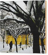 Prague Winter  Wood Print