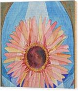 Praying Gerbera Wood Print