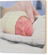 Premature Baby Wood Print