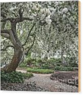Prescott Park Wood Print