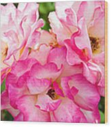 Pretty Pink Roses Wood Print by Bobbi Feasel