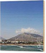 Puerto Banus Beach Wood Print