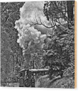 Puffing Billy Wood Print