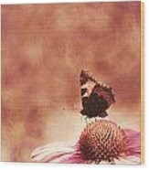 Purple Echinacea Flower Wood Print