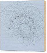 Quantum Nautilus Wood Print