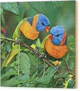 Rainbow Lorikeet Pair Wood Print