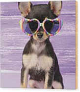Rainbow Sunglasses Wood Print by Greg Cuddiford