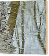 Raindrops On Reflections II Wood Print