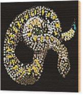 Rattlesnake Bedazzled Wood Print