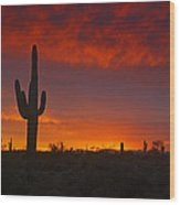 Red Desert Skies  Wood Print