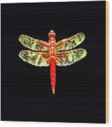 Red Dragonfly Small Wood Print