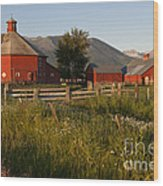 Red Farm Wood Print