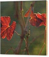 Red Grape Leaves Wood Print