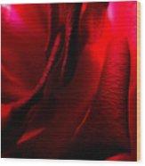Red Petal Macro 3 Wood Print
