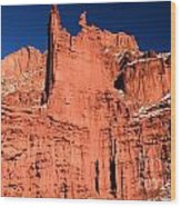 Red Rock Fisher Towers Wood Print