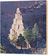 Red Rocks Open Space Wood Print
