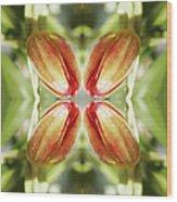 Red Tulip Wood Print
