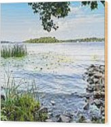 Reeds And Dnieper River Wood Print
