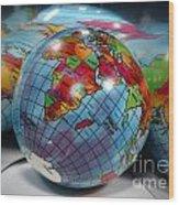 Reflected Globe Wood Print