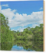 Reflection Of Trees And Clouds In South Wood Print
