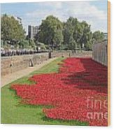 Remembrance Poppies At Tower Of London Wood Print