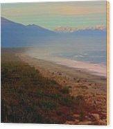 Remote New Zealand Beach Wood Print