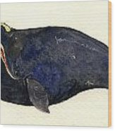Right Whale Wood Print