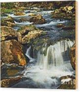 River Rapids Wood Print by Elena Elisseeva