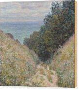 Road At La Cavee Wood Print