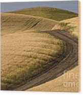 Road Through Wheat Field Wood Print