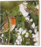 Robin Wood Print by Dave Woodbridge