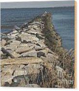 Rock Jetty At Sandy Point Wood Print