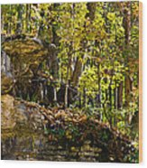 Rock Shelf And Forest Wood Print
