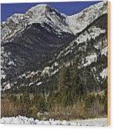 Rockies Wood Print by Tom Wilbert