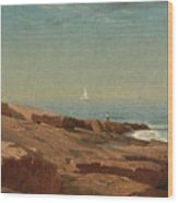 Rocks At Narragansett Wood Print