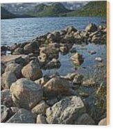 Rocky Shoreline In Acadia National Park Wood Print