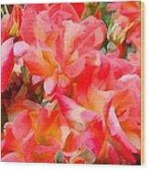 Rose 303 Wood Print