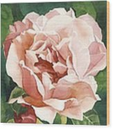 Rose In Pink Wood Print