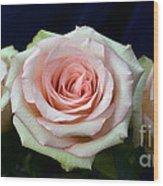 Roses 8405 Wood Print