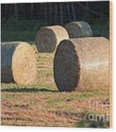 Round Hay Bales Wood Print